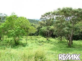 One of seven lots offered at a discount in Costa Rica's Finca Vainilla