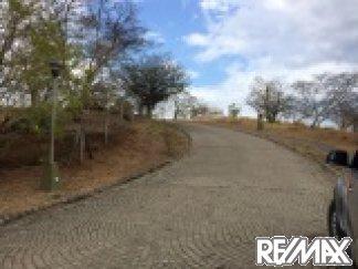 Road inside Los Altos Del Cacique