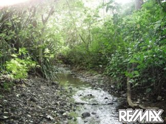 Creek on Lomas Del Mar Lot 253 in Costa Rica